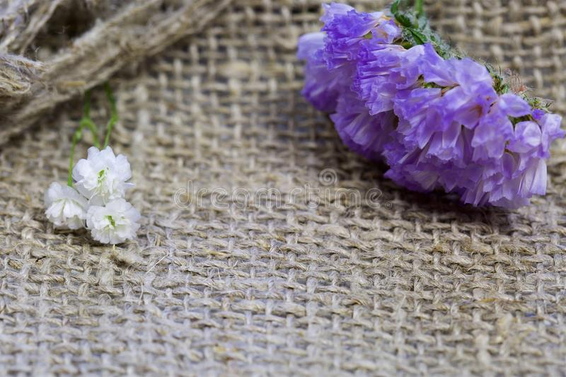 Flowers on a linen background royalty free stock images