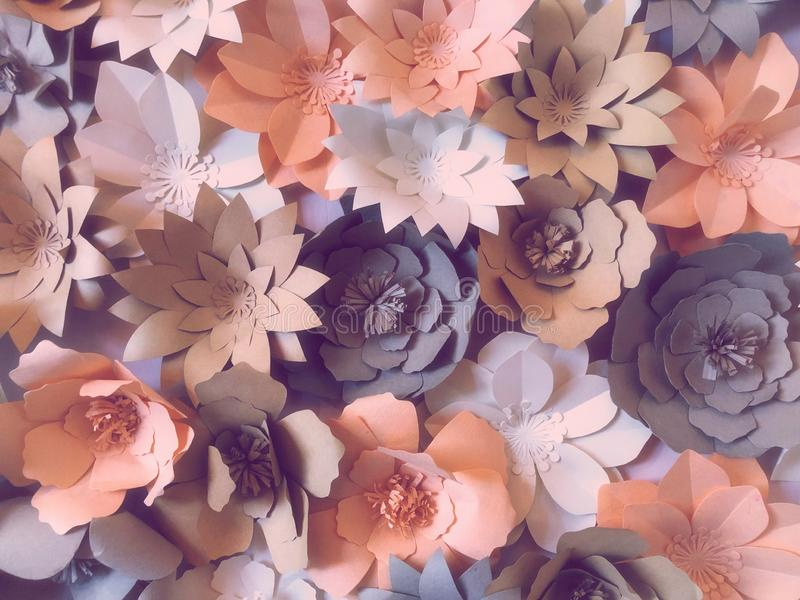 Flowers made of paper are handicrafts decorative crafts on the walls  abstact background. Pastel color stock photos