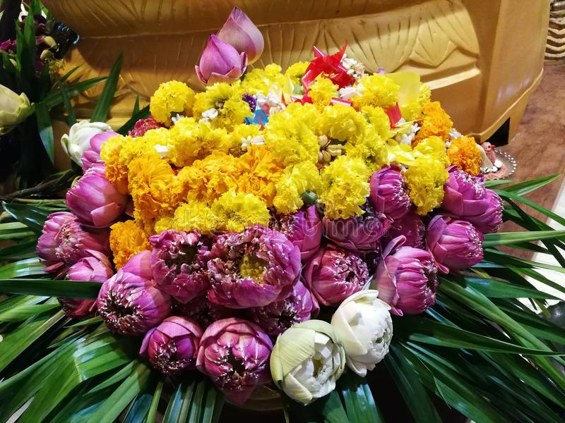 Flowers, marigolds, lotus, banana, coconut or fruit for the worship in Thailand Temple at Happy new year cerebation. Cornflowers, marigolds, lotus, banana stock image