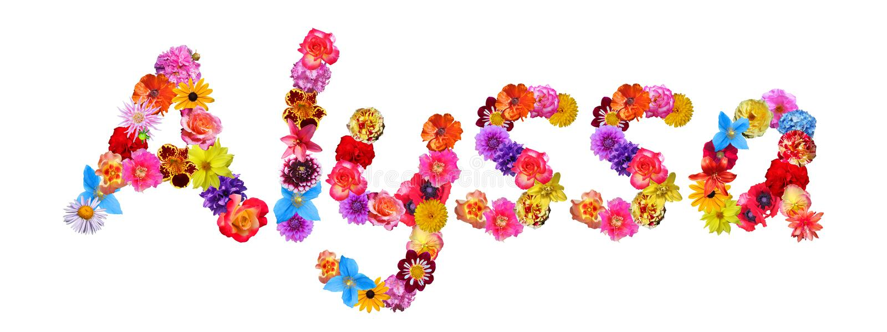 Flowers Name Alyssa stock illustration. Illustration of ...