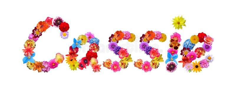 Flowers Name Cassie vector illustration