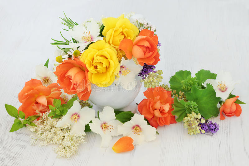 Flowers for Natural Herbal Medicine. Flower and herb selection used in natural alternative medicine with mortar and pestle royalty free stock photo
