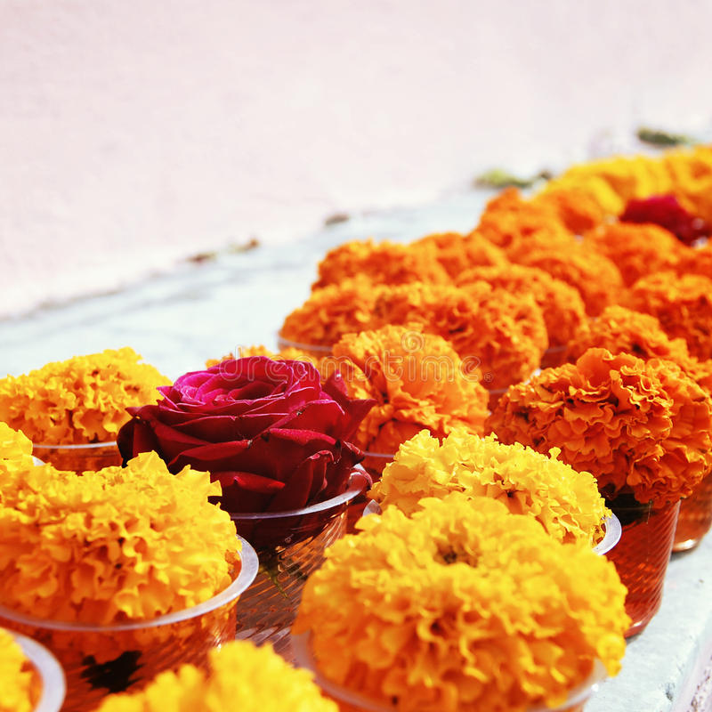 Flowers for offering respect at Mahabodhi Temple. Marigold and rose for offering respect at Mahabodhi Temple. Aged photo. Colorful flowers on the white shelf royalty free stock photography