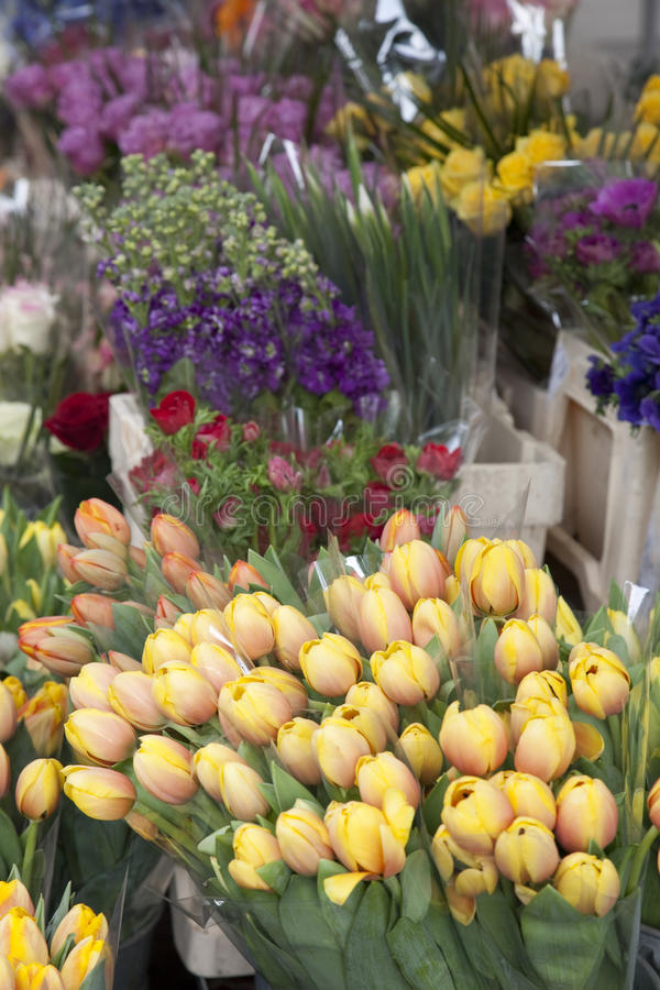 Free Flowers On Sale At Florist Stock Photography - 20088902