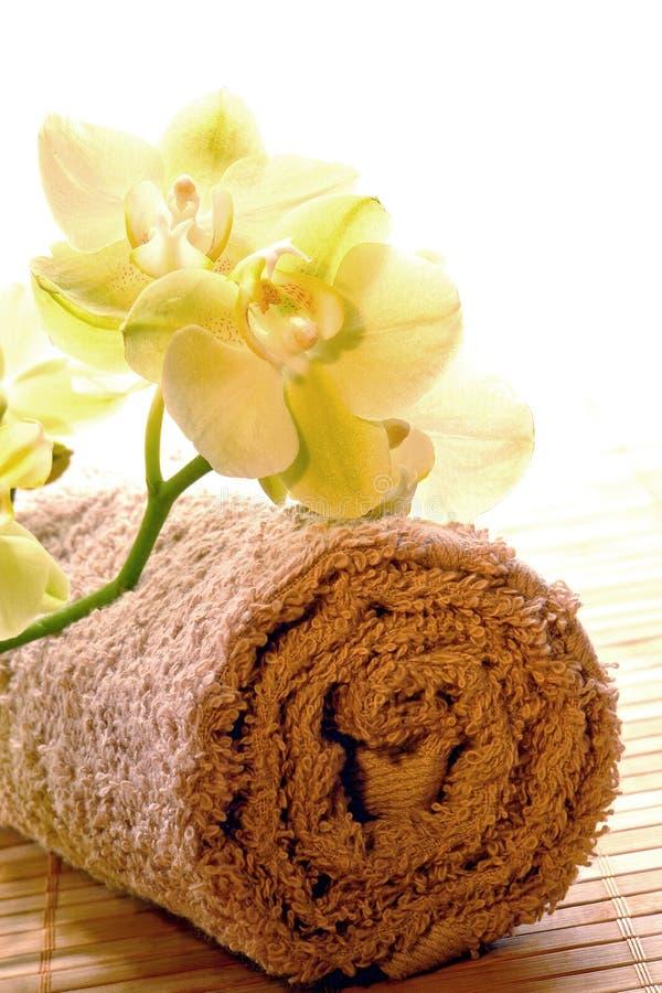 flowers orchid spa πετσέτα στοκ φωτογραφία με δικαίωμα ελεύθερης χρήσης