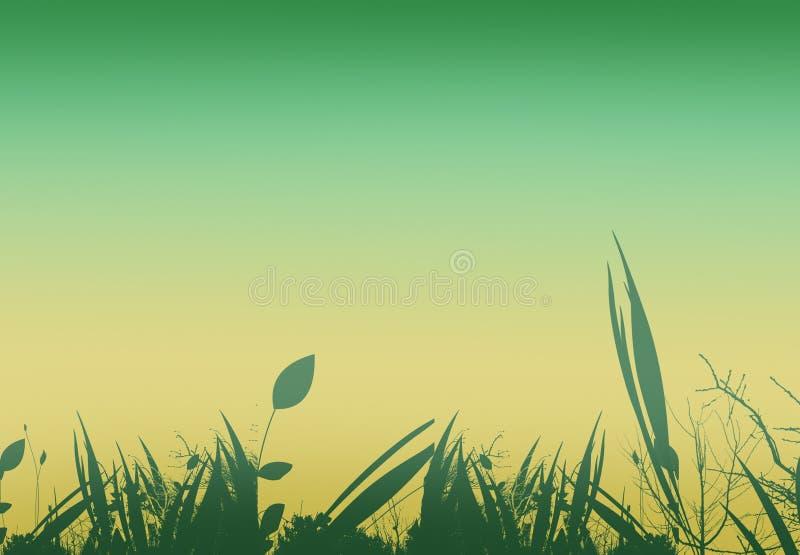 Flowers over green vector illustration
