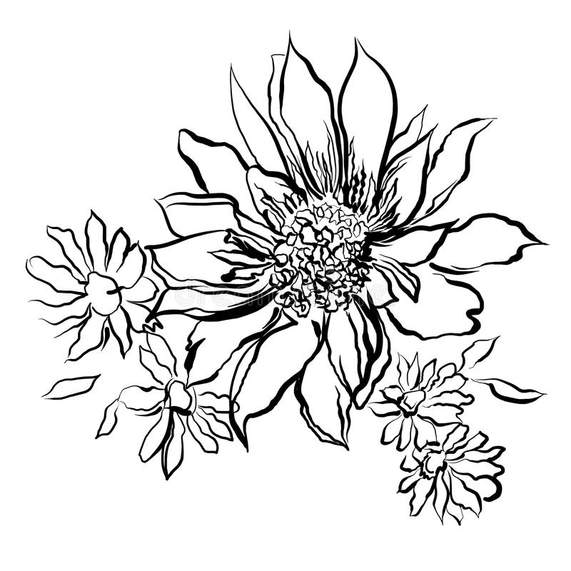 Black Flower On White Background Royalty Free Stock: Flowers, Painted Black Outline On The White Background