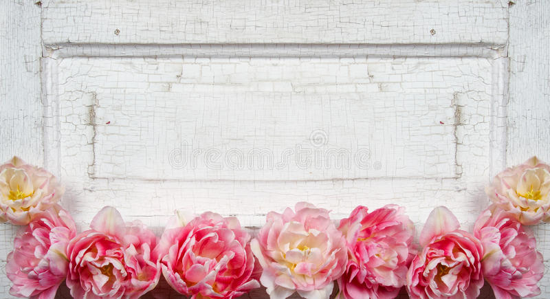 Flowers on a paneled vintage door royalty free stock photos