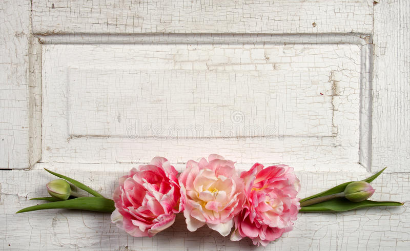 Flowers on a paneled vintage door royalty free stock image