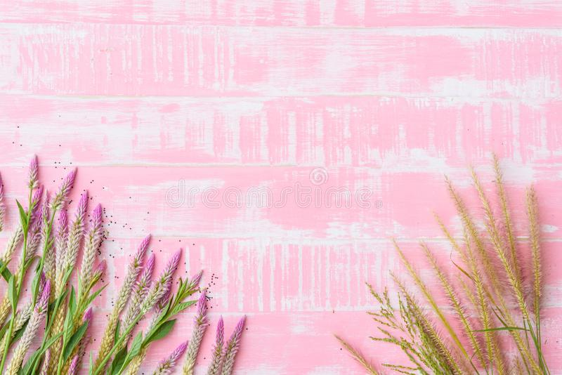 Flowers on a pastel bright pink wooden background. Spring and summer concept stock images