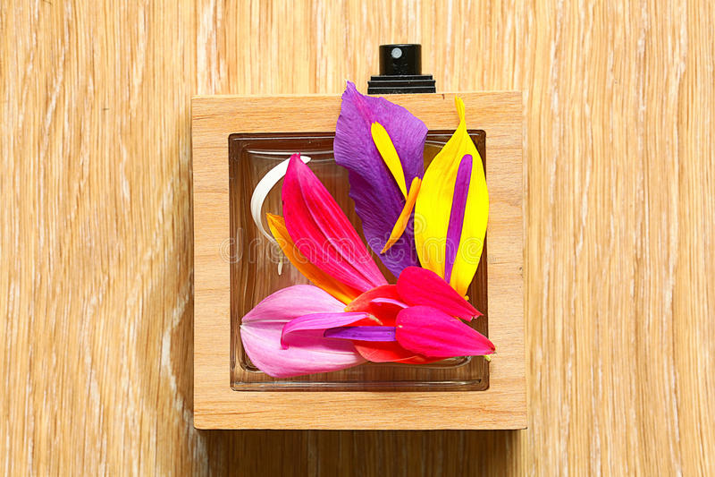Flowers petals stock images