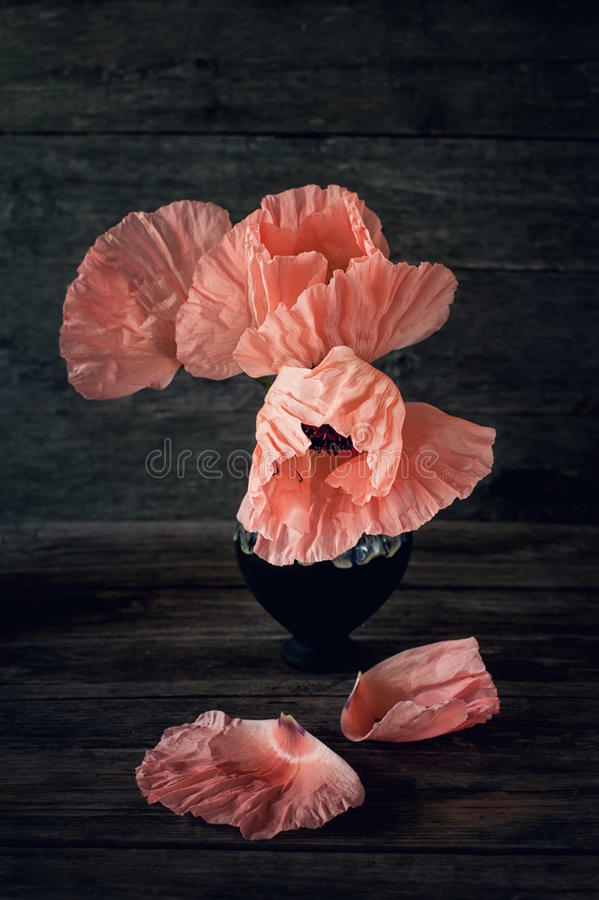 Flowers pink large poppy in a vase on a dark background in rustic style. Art. The vertical frame stock images