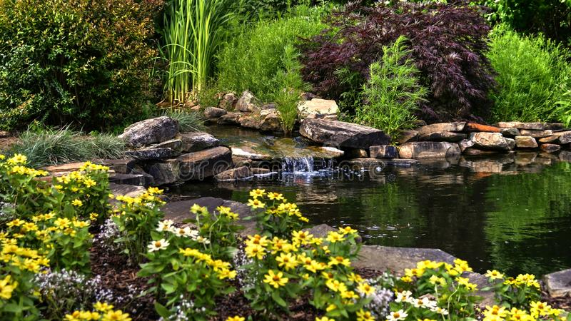 Flowers and Pond. This was taken in my backyard during midday. Beautiful scene during late spring royalty free stock image