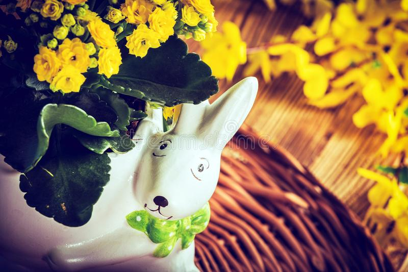 Flowers in a pot. stock photo