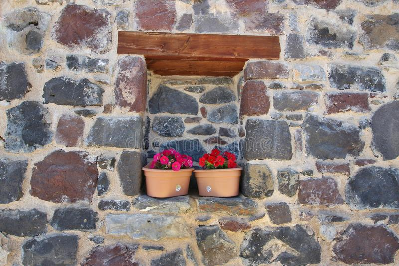 Flowers in Pots in a Stone Wall royalty free stock photos
