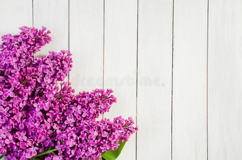 Flowers of purple lilac on a white wooden background stock photos