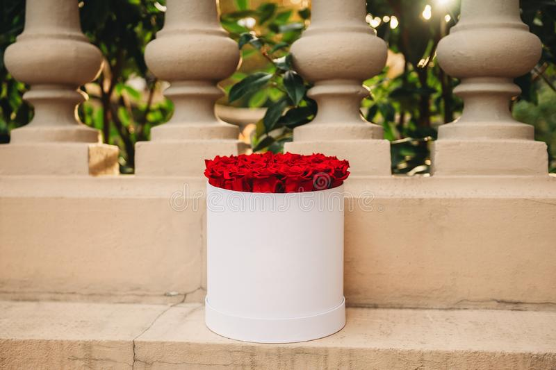 Flowers in round white present box royalty free stock photos