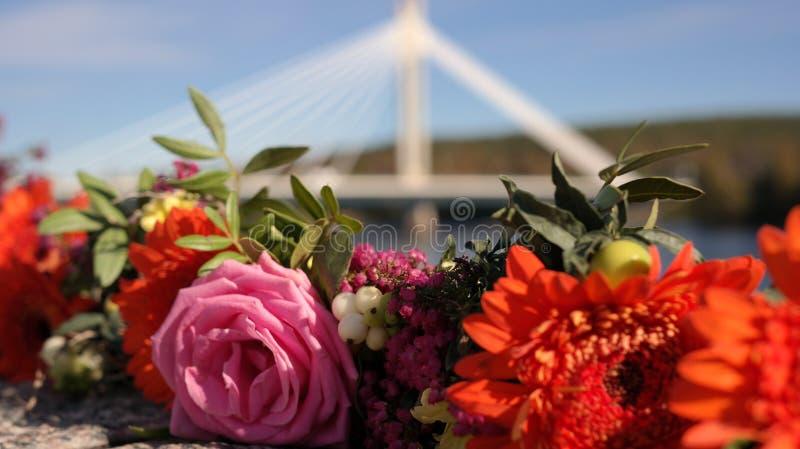 Flowers with Rovaniemi bridge in the background stock photos