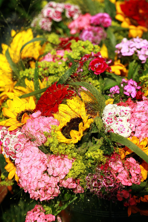 Download Flowers for sale stock photo. Image of nature, colourful - 19771742
