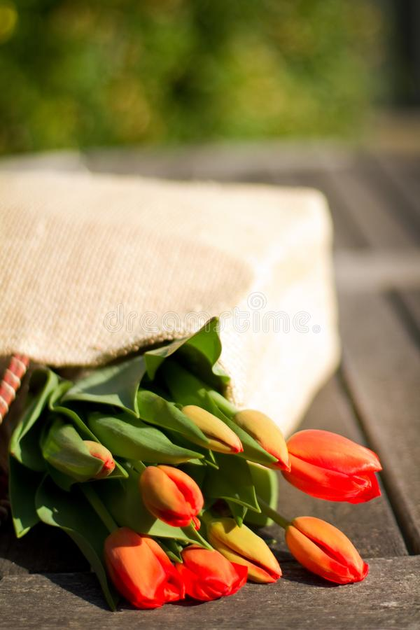Download Flowers in a shopping bag stock photo. Image of bright - 19405078