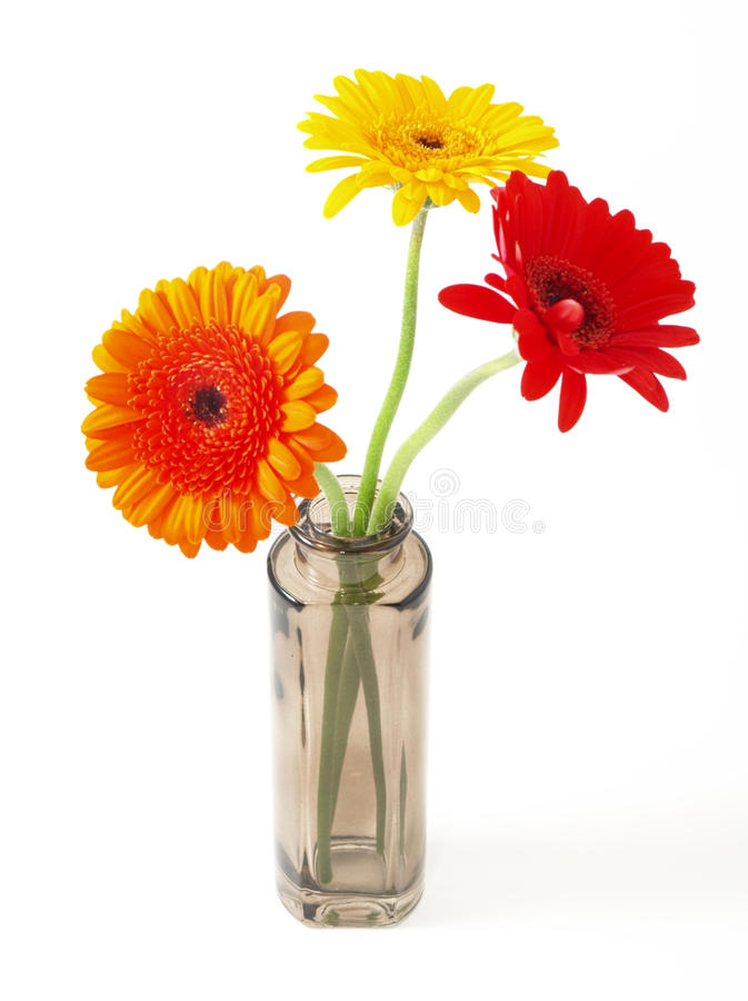 Flowers in small bowl royalty free stock images