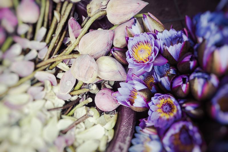 Flowers sold to be used as offerings in front of the Temple of the Tooth Relic in Kandy Sri Lanka. Slective Focus.  stock images