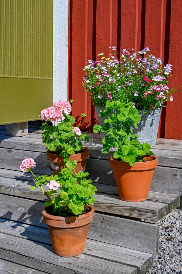 Flowers on stairs infront of a red wooden cabin. In Sweden stock image