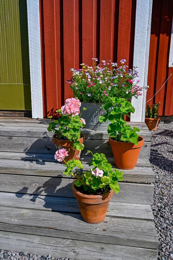 Flowers on stairs infront of a red wooden cabin. In Sweden royalty free stock images