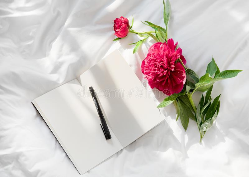 Flowers staying on open book in bed. Romantic good morning. Top view. Peony flowers staying on open book in white bed. Blank open diary and red flower on a royalty free stock photo