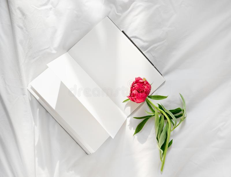 Flowers staying on open book in bed. Romantic good morning. Top view stock photography