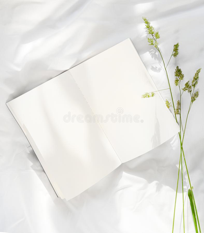 Flowers staying on open book in bed. Romantic good morning. Top view. Flowers staying on open book in white bed. Good morning. Top view royalty free stock images