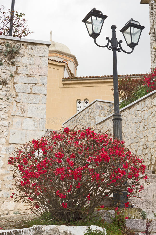 Flowers And Street Lamp stock images