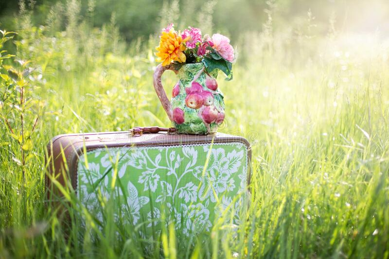 Flowers on suitcase in countryside stock images