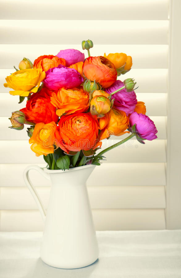Flowers with sun light coming out of window blinds royalty free stock photos