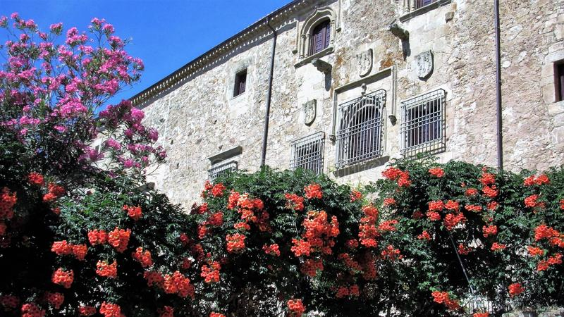 Flowers surrender a medieval house stock images