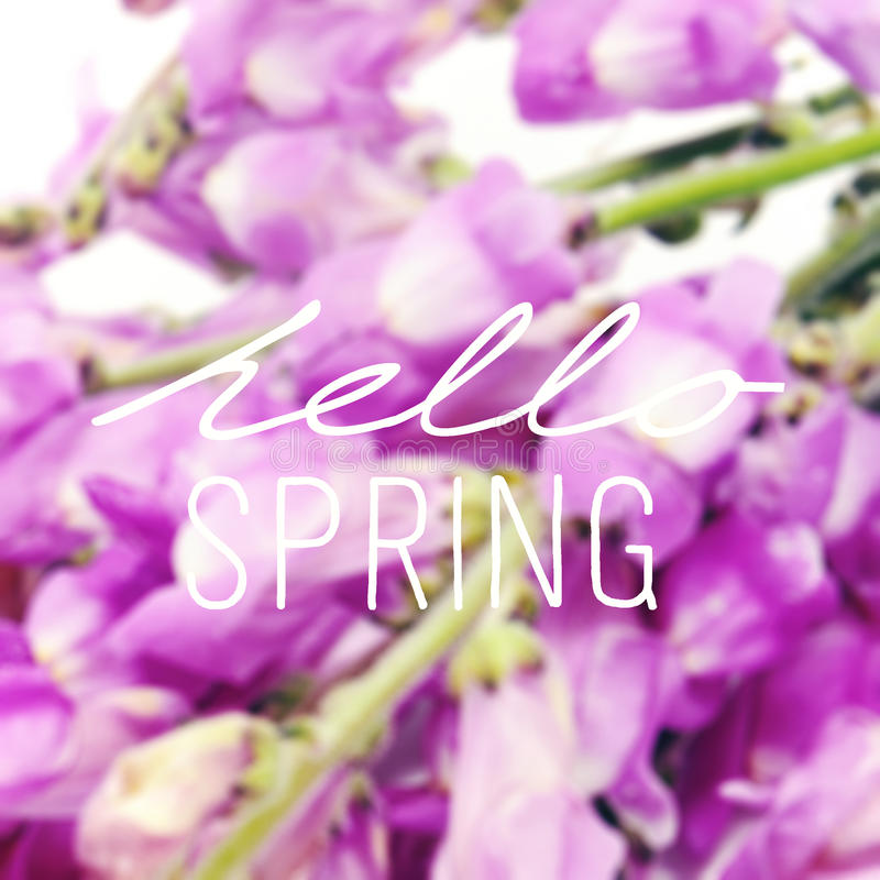 Flowers and the text hello spring stock photo