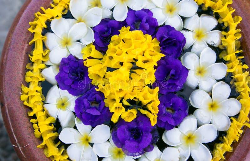 Flowers. stock photo