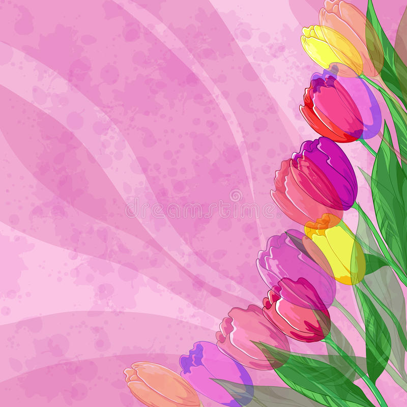 Download Flowers Tulips On Pink Background Stock Vector - Illustration: 25557903