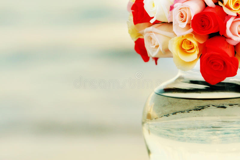 Download Flowers in vase stock photo. Image of pretty, water, gardening - 22932478