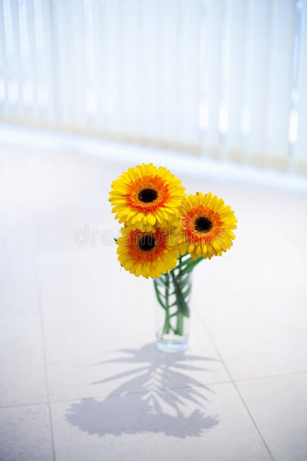 Download Flowers In Vase Royalty Free Stock Photography - Image: 26631797