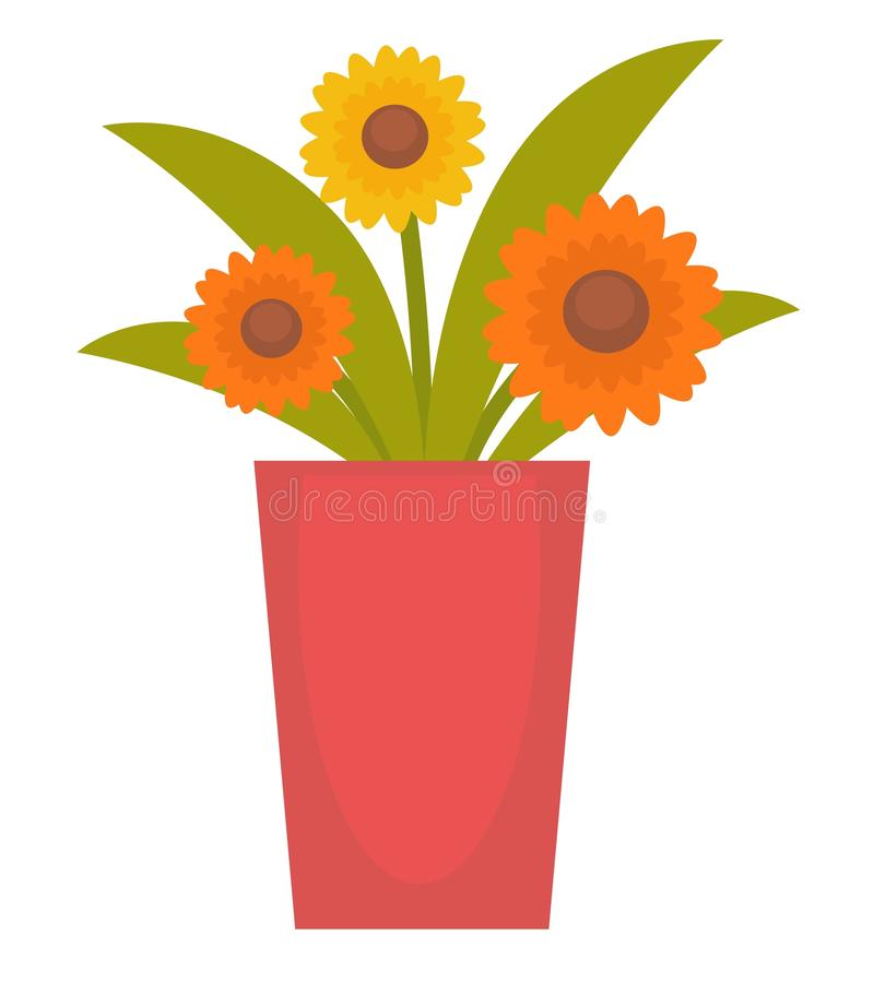 Flowers in a vase. Vector illustration of orange colored flowers in a vase isolated on white stock illustration