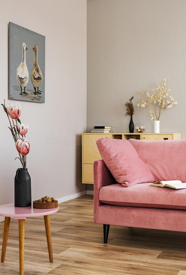 Flowers in vases on wooden commode in contemporary living room interior with pastel pink sofa. Flowers in vases on wooden commode in contemporary living room stock photo
