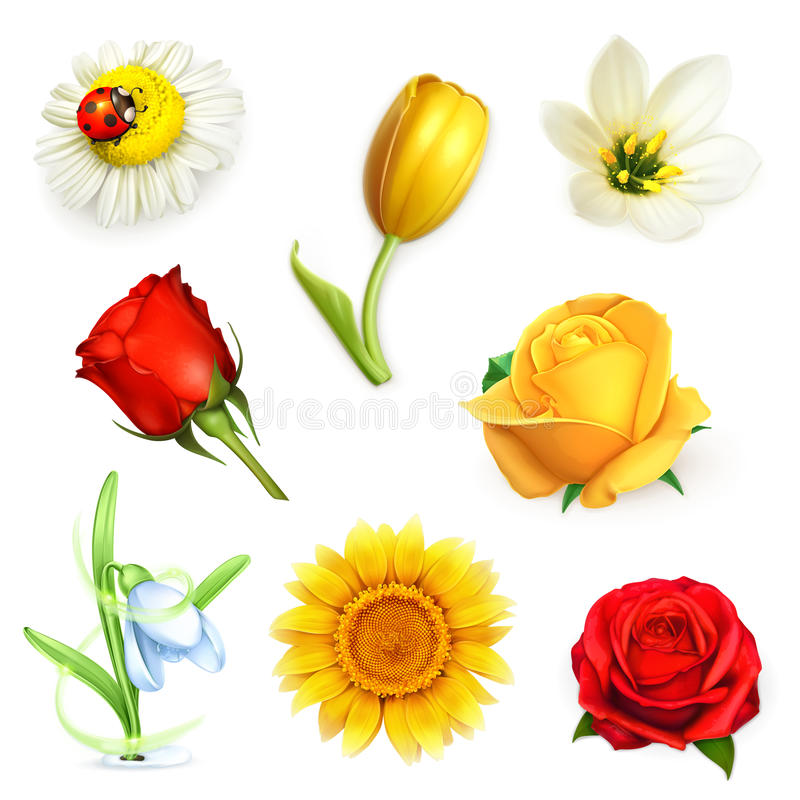 Flowers, vector set vector illustration