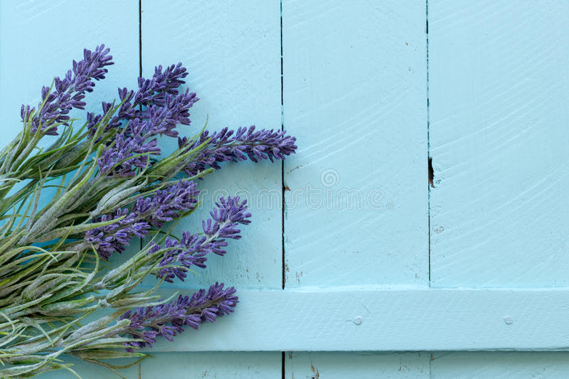 Flowers on vintage wood background royalty free stock photography