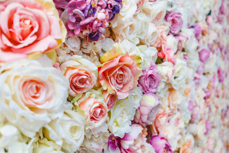 Flowers wall background with amazing red and white roses, Wedding decoration,. Hand made stock images