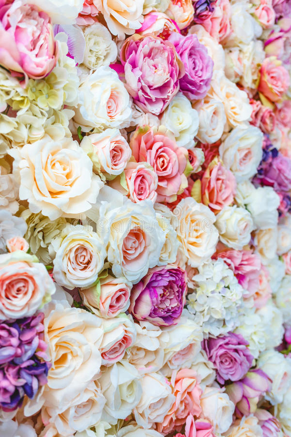 Flowers wall background with amazing red and white roses, Wedding decoration,. Hand made royalty free stock photo
