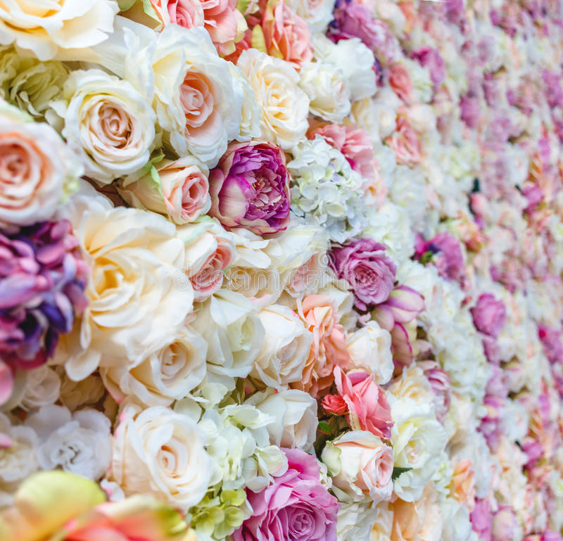 Flowers wall background with amazing red and white roses, Wedding decoration. Hand made stock photo