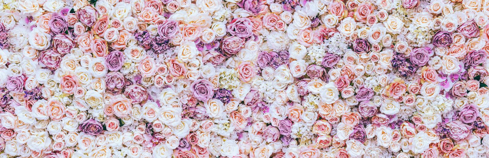Flowers wall background with amazing red and white roses, Wedding decoration, hand made. Toning stock photos