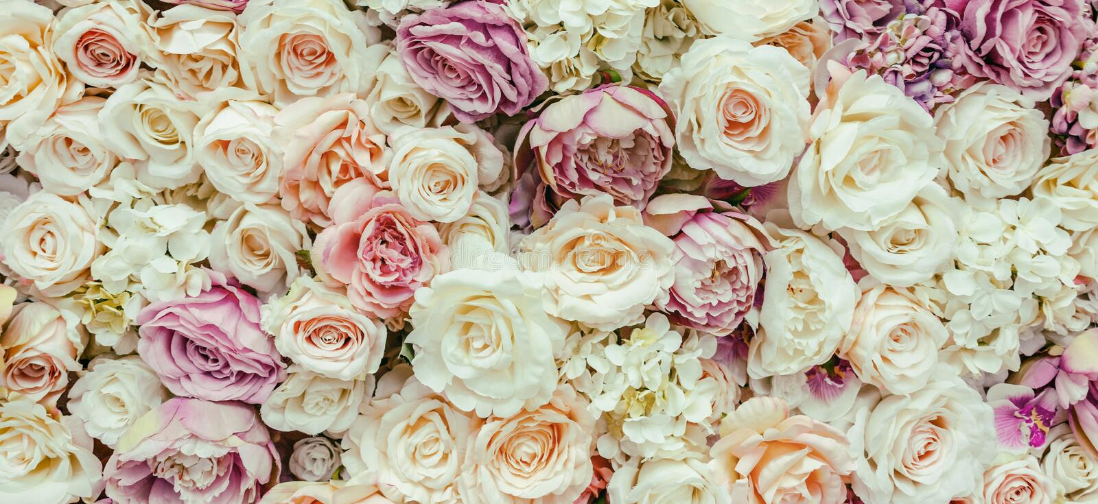 Flowers wall background with amazing red and white roses, Wedding decoration, hand made. Toning royalty free stock photography