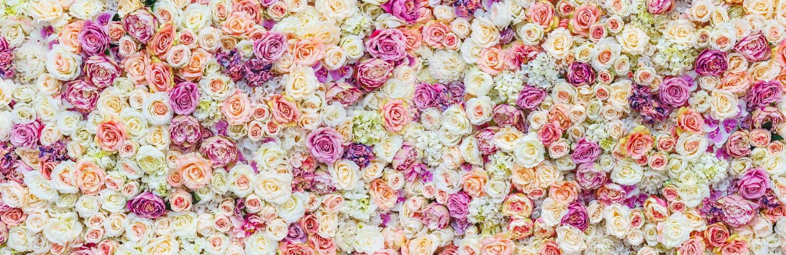 Flowers wall background with amazing red and white roses, Wedding decoration, hand made royalty free stock photography
